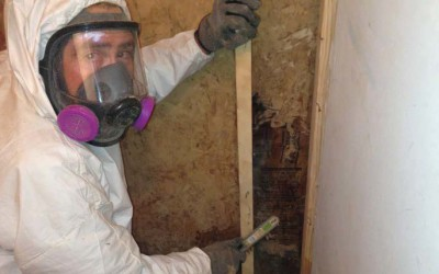Getting Rid of Mold in Santa Fe NM